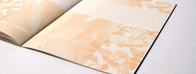 Editorial Design: Stephanie Moll